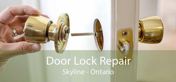 Door Lock Repair Skyline - Ontario