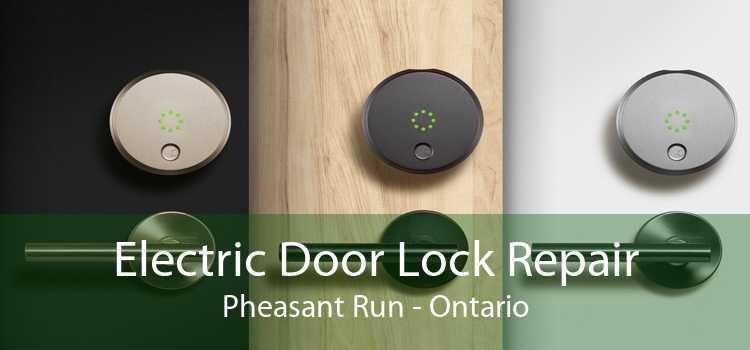 Electric Door Lock Repair Pheasant Run - Ontario