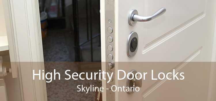 High Security Door Locks Skyline - Ontario