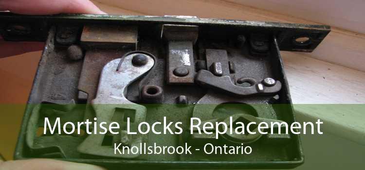 Mortise Locks Replacement Knollsbrook - Ontario