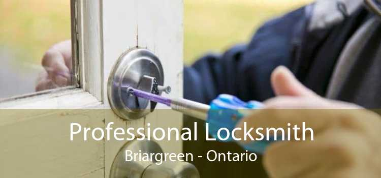 Professional Locksmith Briargreen - Ontario