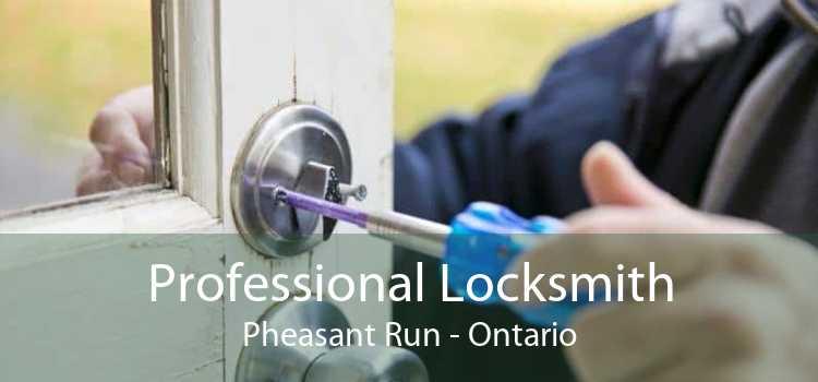 Professional Locksmith Pheasant Run - Ontario