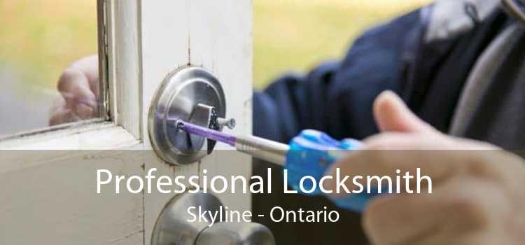 Professional Locksmith Skyline - Ontario