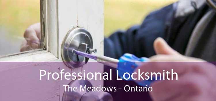 Professional Locksmith The Meadows - Ontario