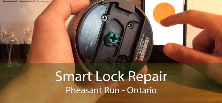 Smart Lock Repair Pheasant Run - Ontario